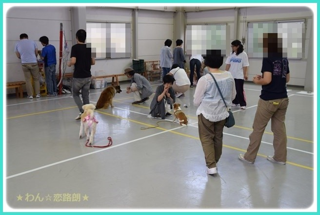 f:id:yasukazu01:20160618203115j:image