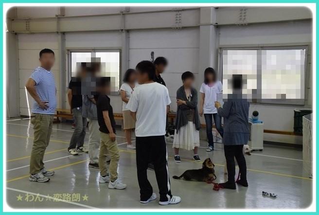 f:id:yasukazu01:20160618205229j:image