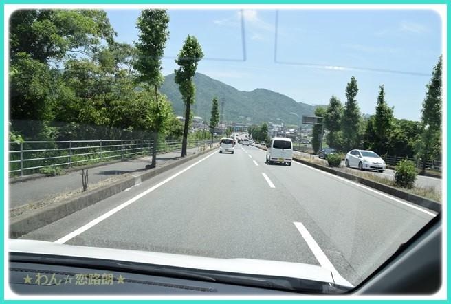 f:id:yasukazu01:20160619205433j:image