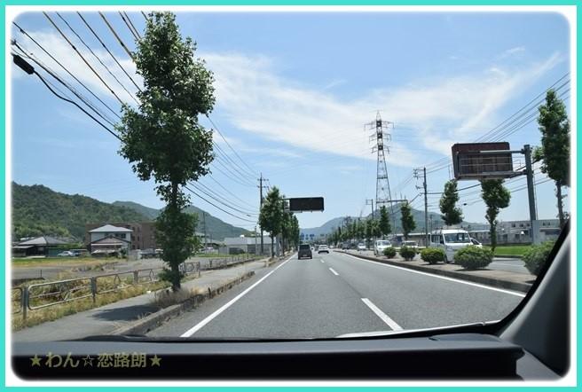 f:id:yasukazu01:20160619205545j:image