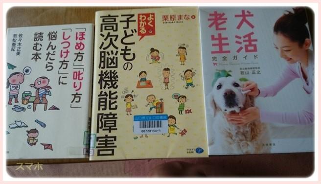 f:id:yasukazu01:20160628195652j:image