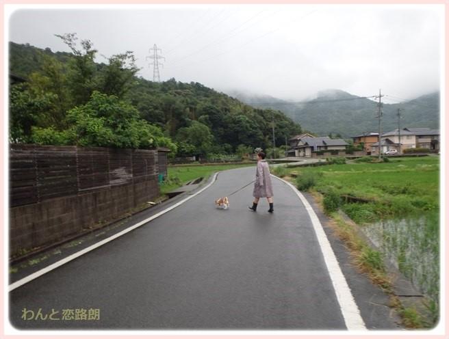 f:id:yasukazu01:20160629203517j:image