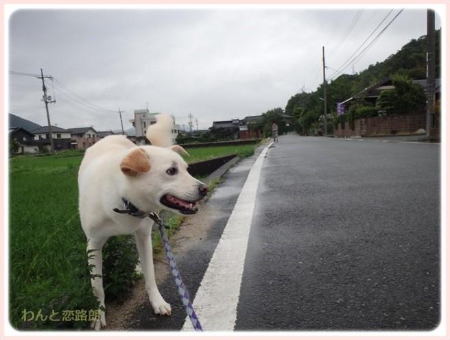 f:id:yasukazu01:20160629203834j:image