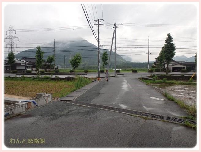 f:id:yasukazu01:20160629205211j:image