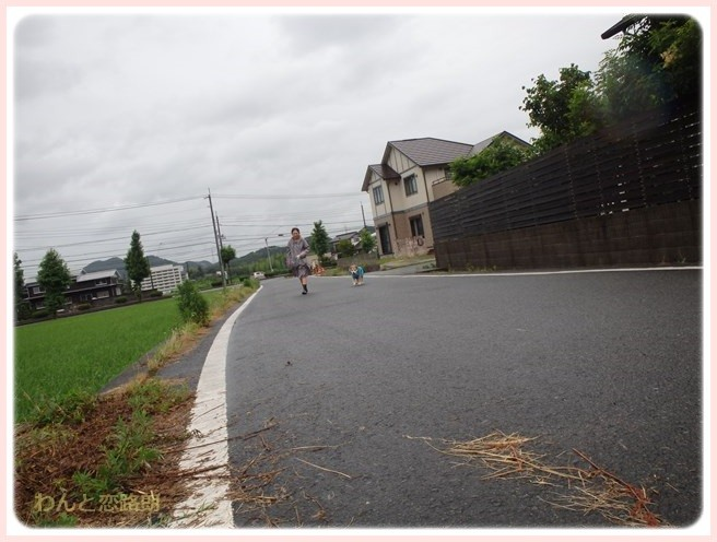 f:id:yasukazu01:20160708204258j:image