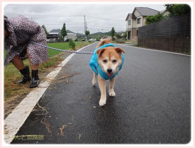 f:id:yasukazu01:20160708204405j:image