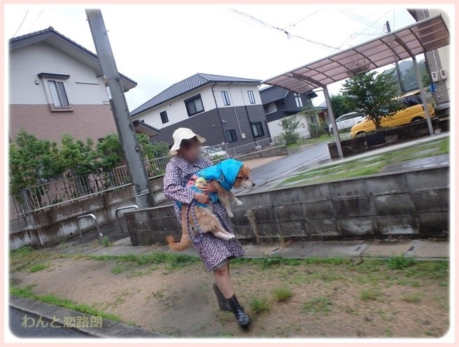 f:id:yasukazu01:20160708204836j:image