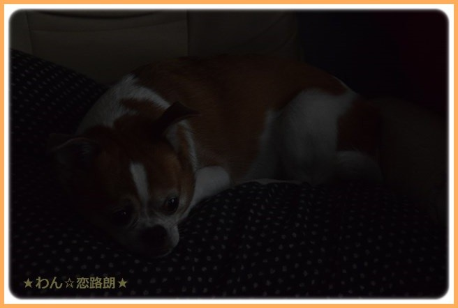 f:id:yasukazu01:20160720210419j:image
