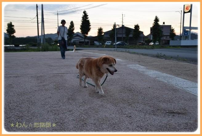 f:id:yasukazu01:20160720211627j:image
