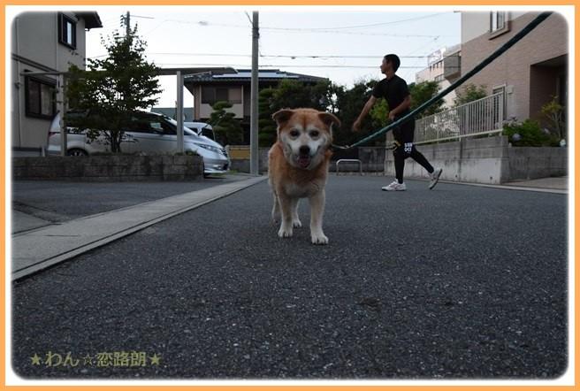 f:id:yasukazu01:20160720211826j:image