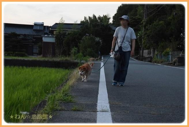 f:id:yasukazu01:20160720212041j:image