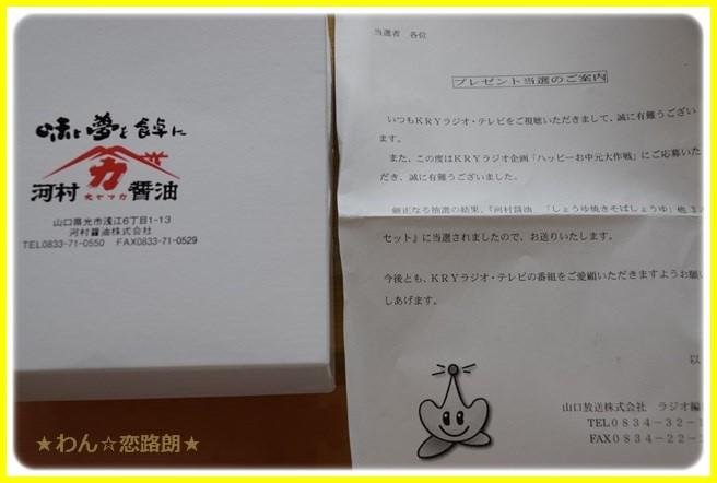 f:id:yasukazu01:20160727211839j:image