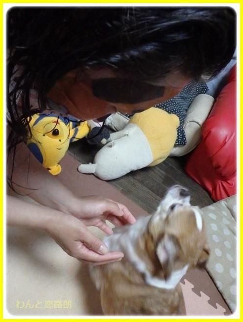 f:id:yasukazu01:20160727213237j:image