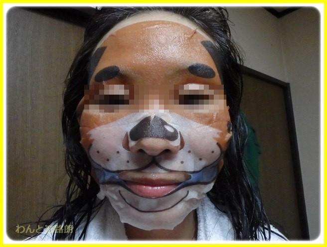 f:id:yasukazu01:20160727213404j:image