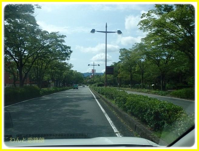 f:id:yasukazu01:20160729220116j:image