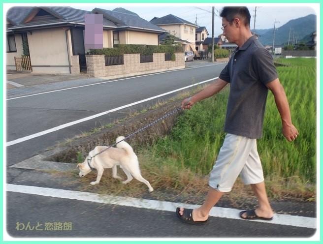 f:id:yasukazu01:20160810214843j:image