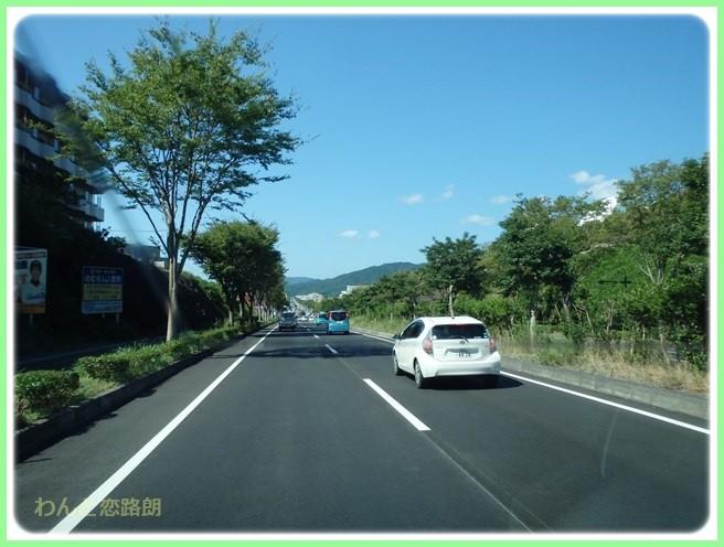 f:id:yasukazu01:20160823203431j:image