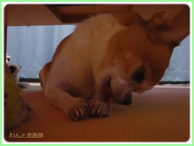 f:id:yasukazu01:20160825205945j:image