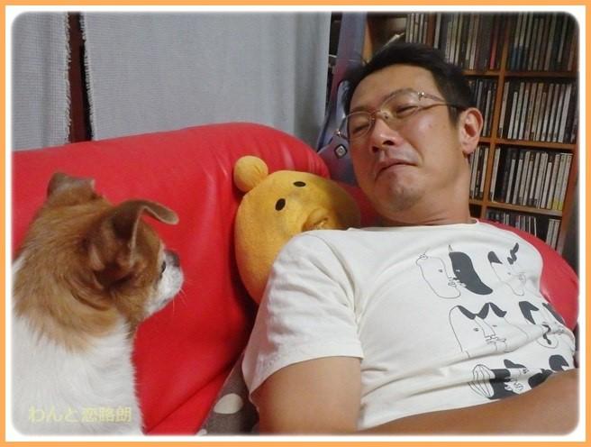 f:id:yasukazu01:20160908204549j:image