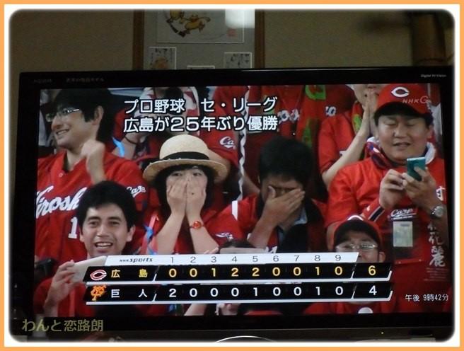f:id:yasukazu01:20160911205414j:image
