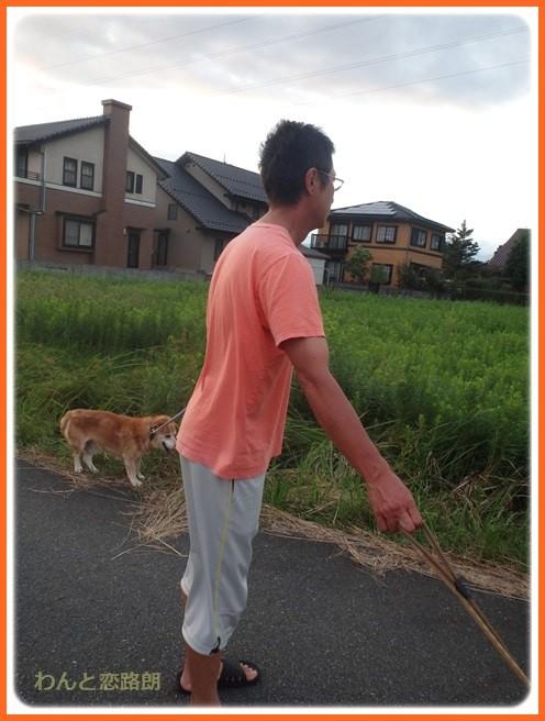 f:id:yasukazu01:20160914221358j:image