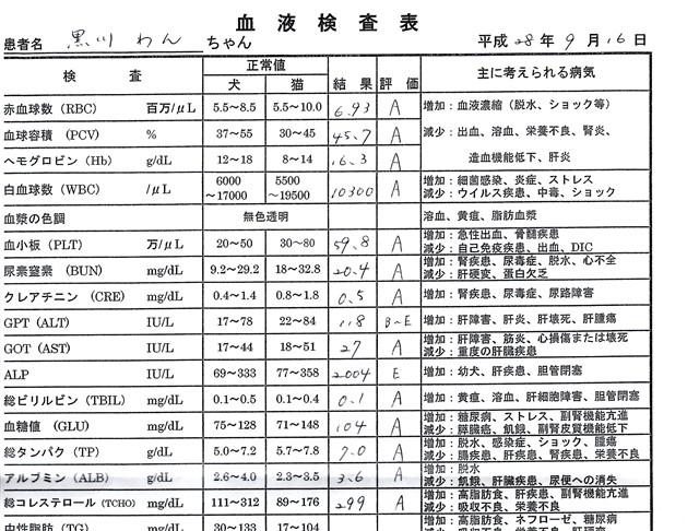 f:id:yasukazu01:20160918200846j:image