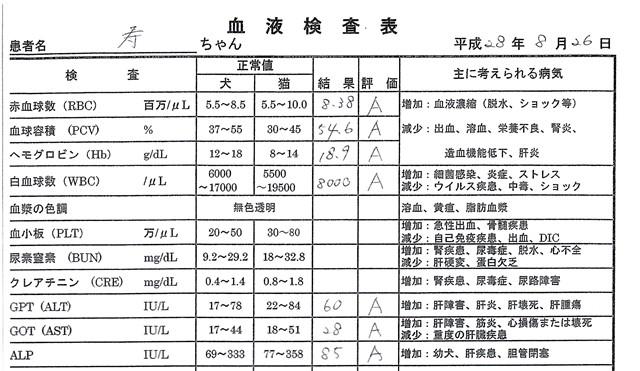 f:id:yasukazu01:20160918202129j:image