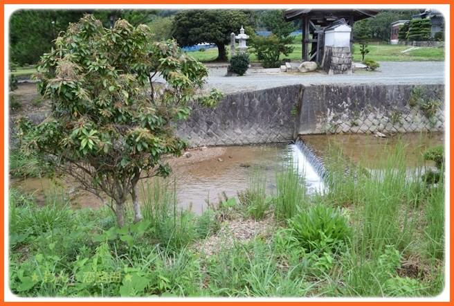 f:id:yasukazu01:20160920203751j:image