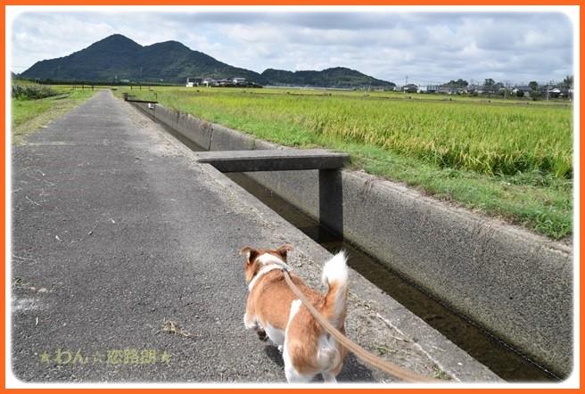 f:id:yasukazu01:20160920204357j:image