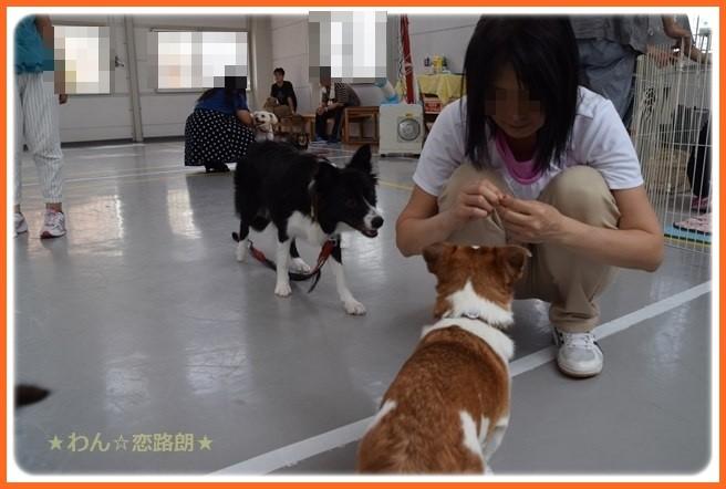 f:id:yasukazu01:20160920210352j:image