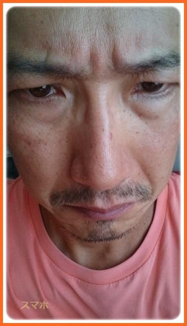 f:id:yasukazu01:20160925203858j:image