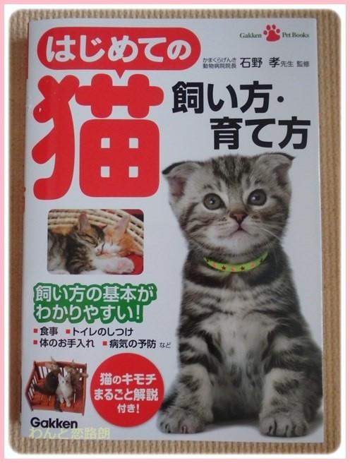 f:id:yasukazu01:20161003160816j:image