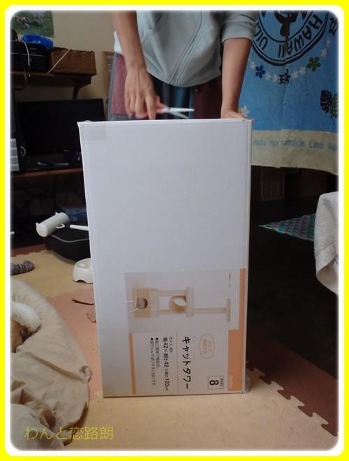 f:id:yasukazu01:20161127123957j:image