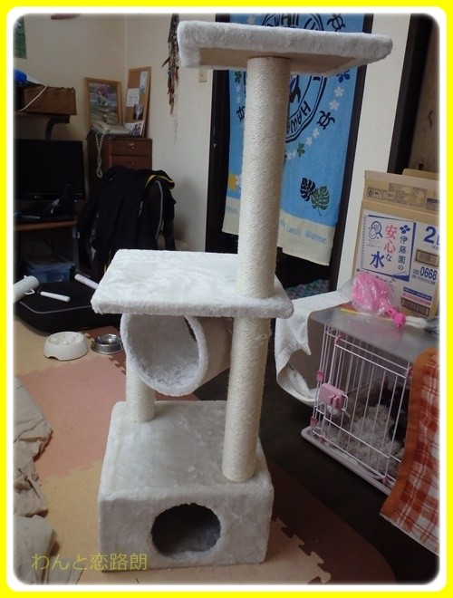 f:id:yasukazu01:20161127125259j:image