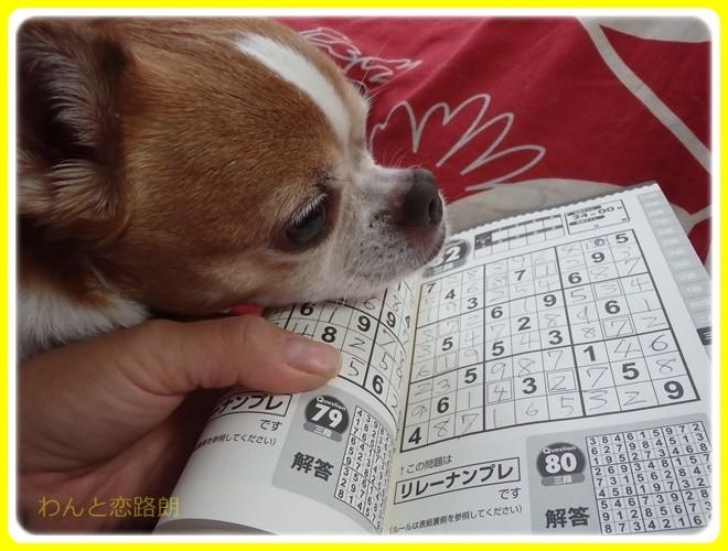 f:id:yasukazu01:20161127133306j:image