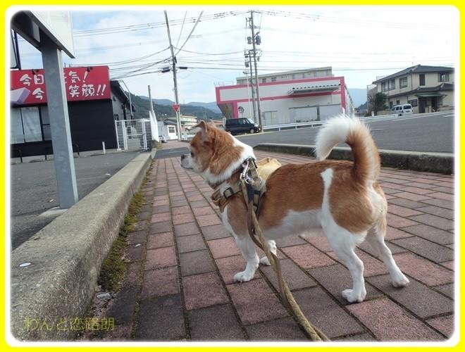 f:id:yasukazu01:20170101102326j:image