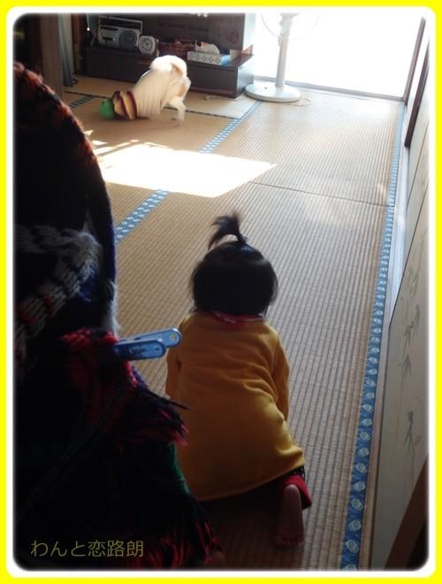 f:id:yasukazu01:20170101135514j:image