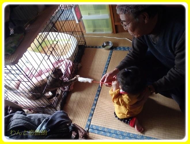f:id:yasukazu01:20170101141924j:image