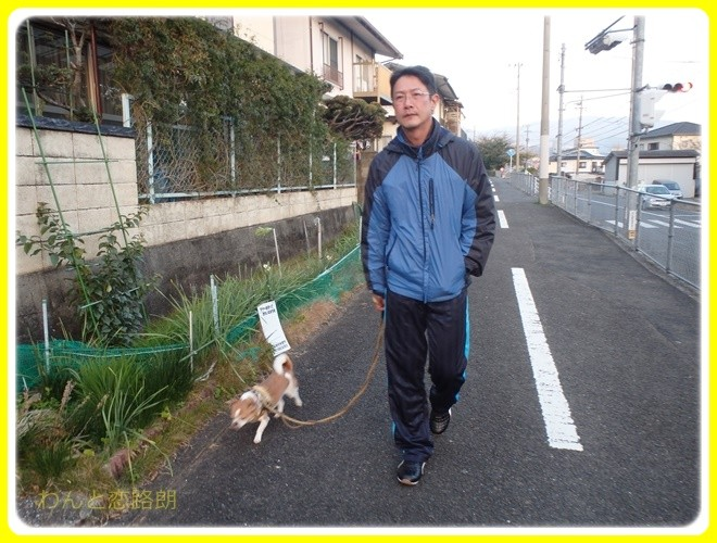 f:id:yasukazu01:20170101170411j:image