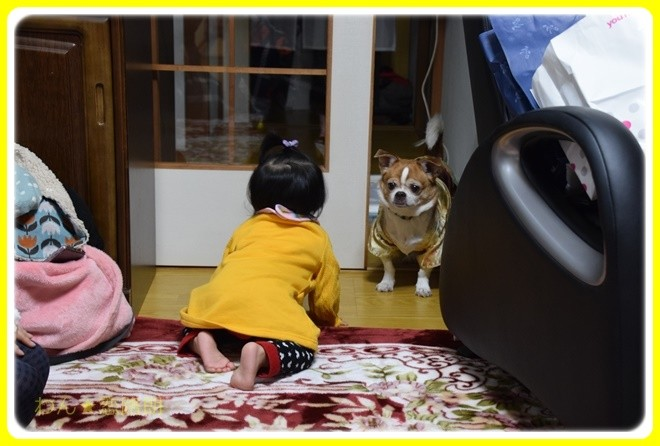 f:id:yasukazu01:20170101182253j:image