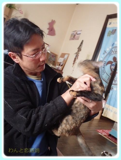 f:id:yasukazu01:20170115145040j:image