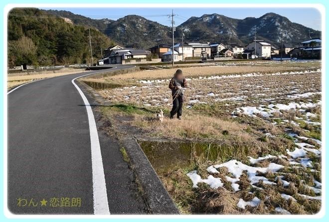 f:id:yasukazu01:20170119165319j:image