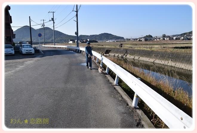 f:id:yasukazu01:20170128101742j:image