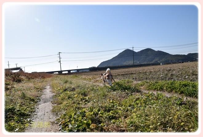 f:id:yasukazu01:20170128102356j:image