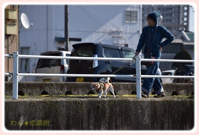 f:id:yasukazu01:20170128205815j:image