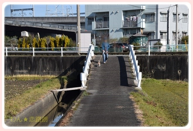 f:id:yasukazu01:20170128205945j:image