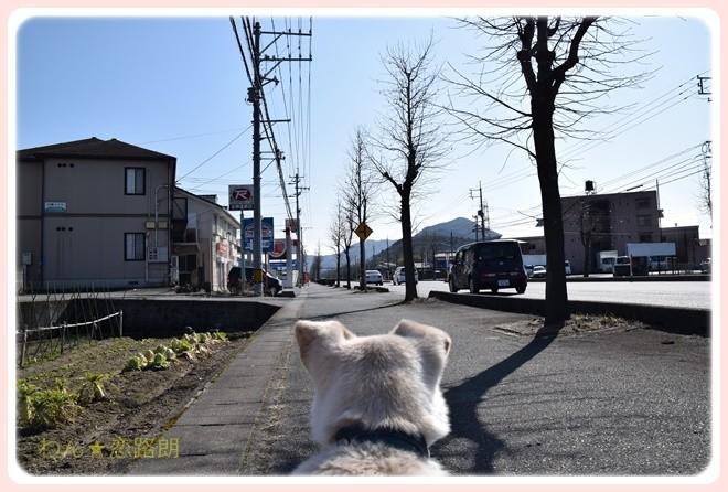 f:id:yasukazu01:20170204133038j:image