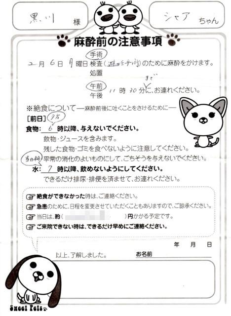 f:id:yasukazu01:20170211191338j:image