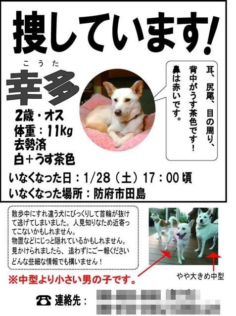 f:id:yasukazu01:20170211193341j:image