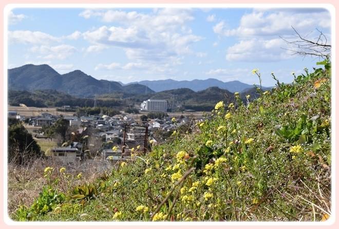 f:id:yasukazu01:20170218145013j:image